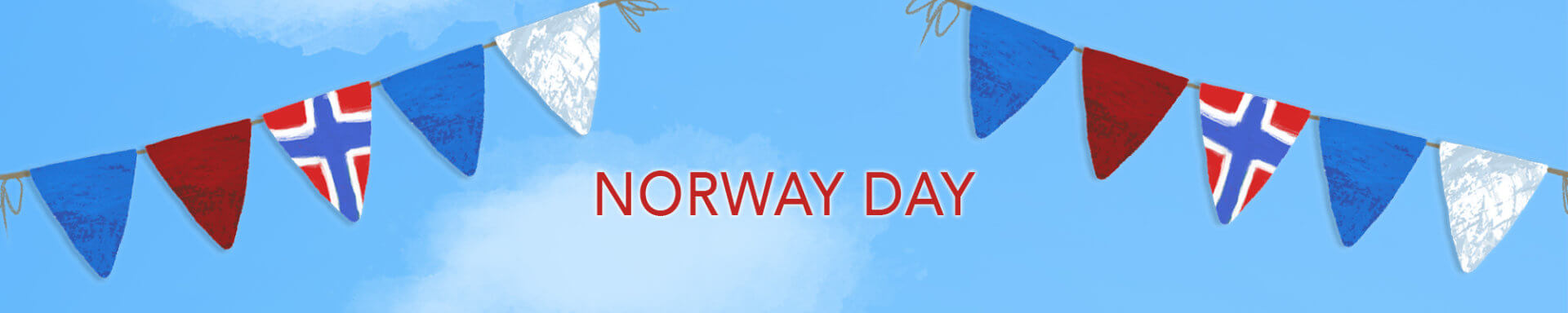 Norway Day Phone Cases